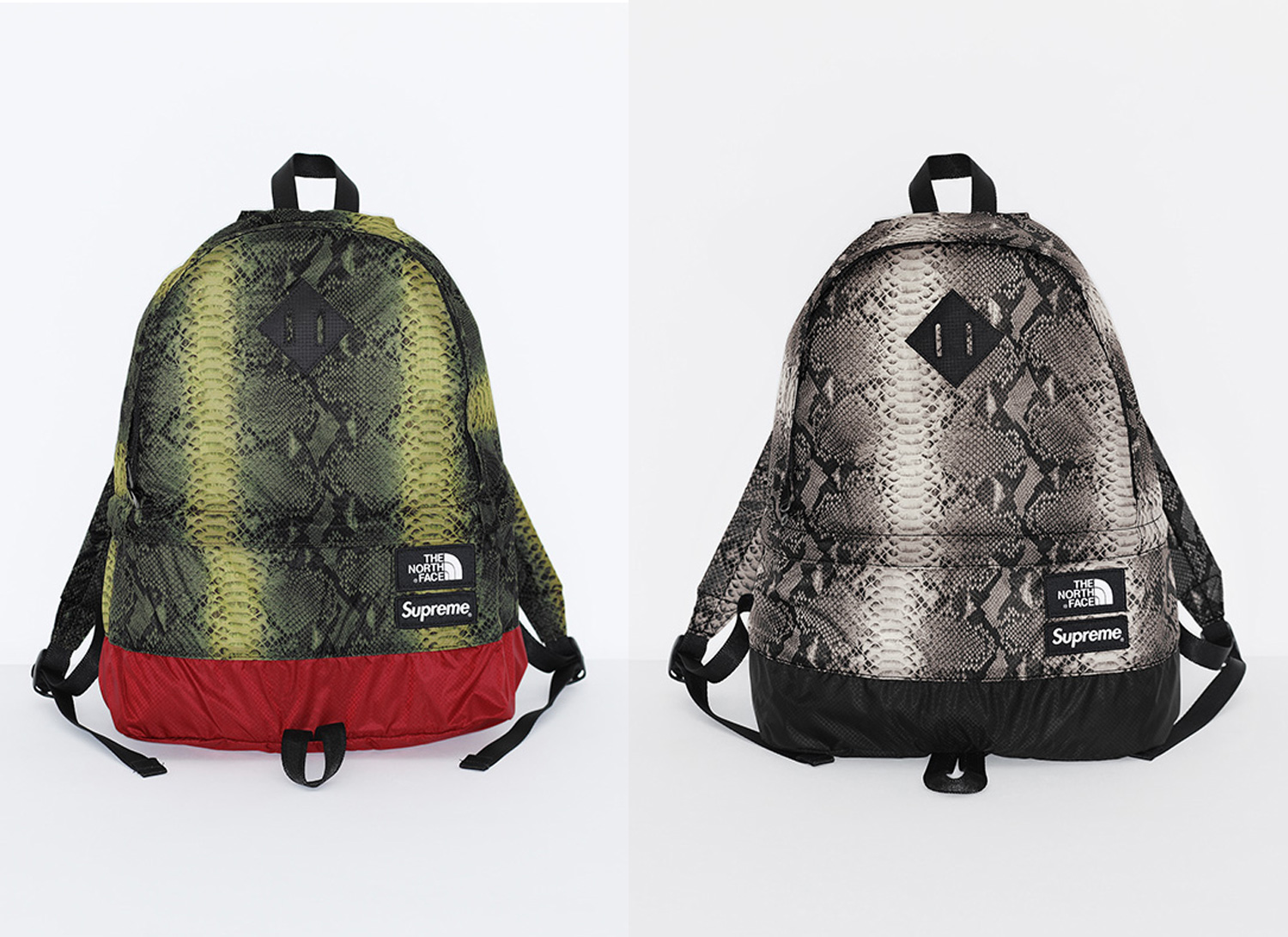 Supreme®/The North Face® Snakeskin Lightweight Day Pack