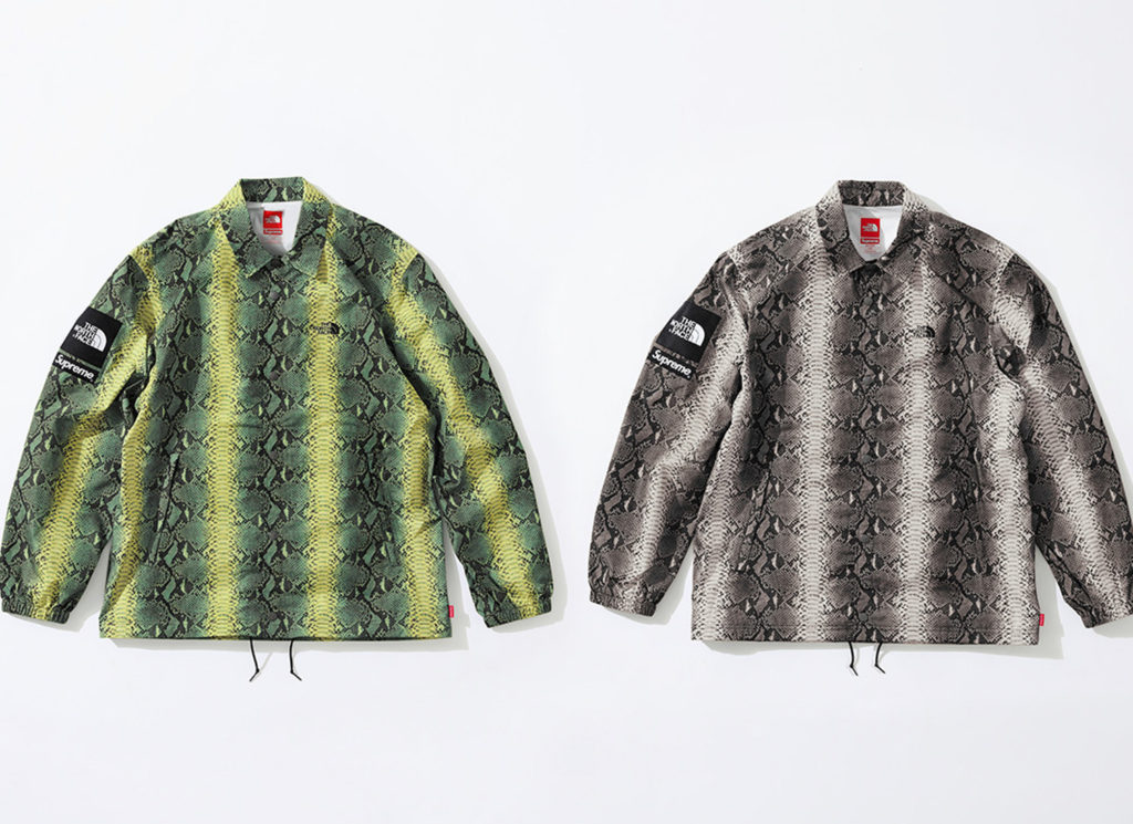 Supreme®/The North Face® Snakeskin Taped Seam Coaches Jacket