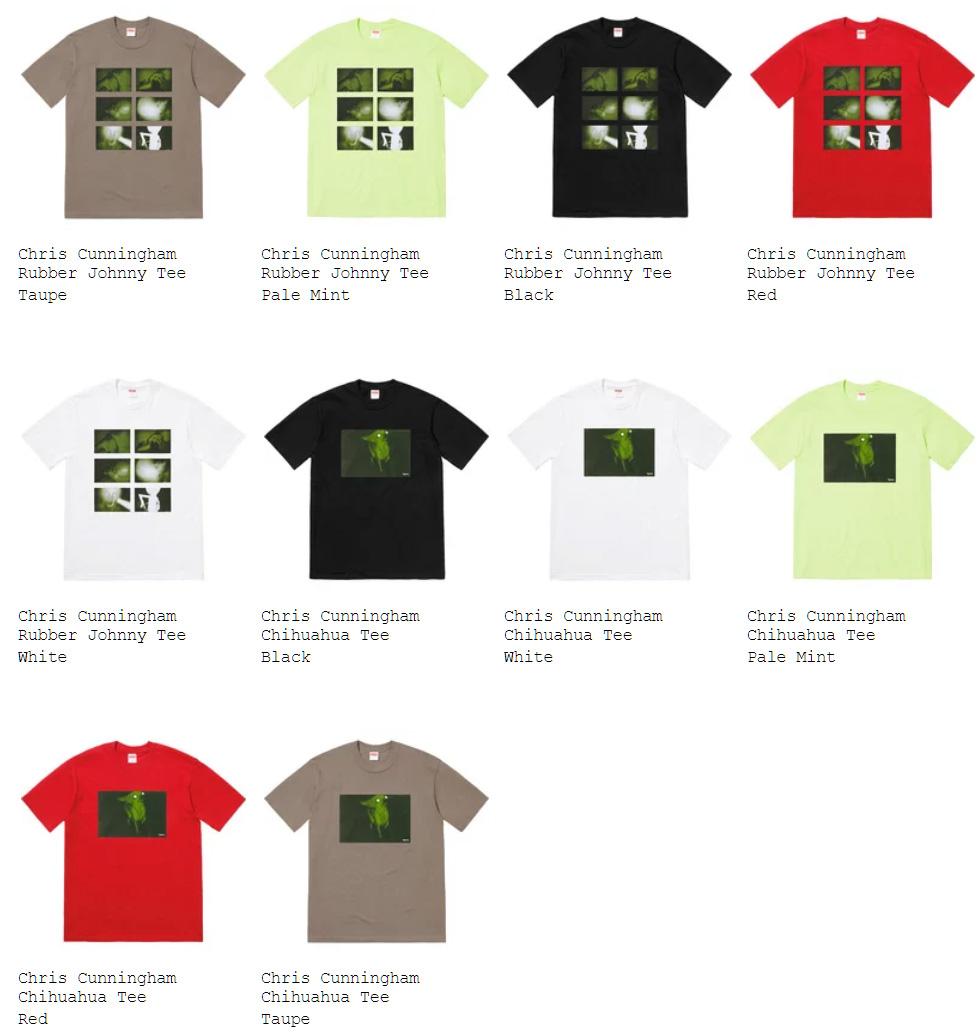 Supreme シュプリーム 18fw 18aw week12 Tシャツ